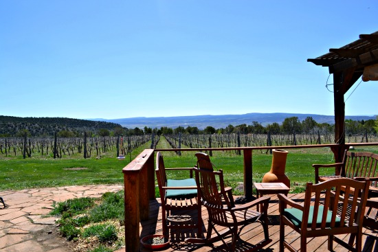 Post image for Day 2 Colorado Wine – North Fork Valley