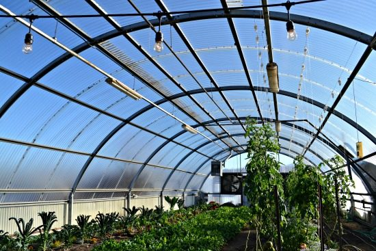 Acres Greenhouse